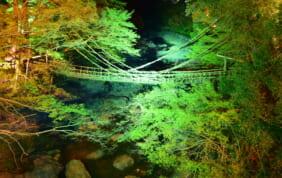 徳島の秘境 大歩危祖谷温泉の旅