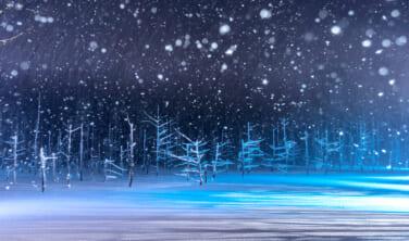 北海道ガストロノミー 美瑛の青い池と白老ウポポイの旅【4日間】