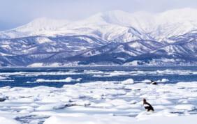 冬の大自然を楽しむ旅