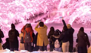 みちのく冬祭り・弘前雪灯籠(ゆきどうろう)、八戸えんぶりの旅【5日間】