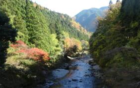 奈良の秘境を歩く みたらい渓谷、大台ケ原、曽爾高原の旅