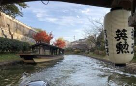 50周年Dコース 京都再訪と大津の旅