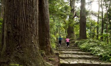 世界遺産 熊野古道を歩く旅【4日間】
