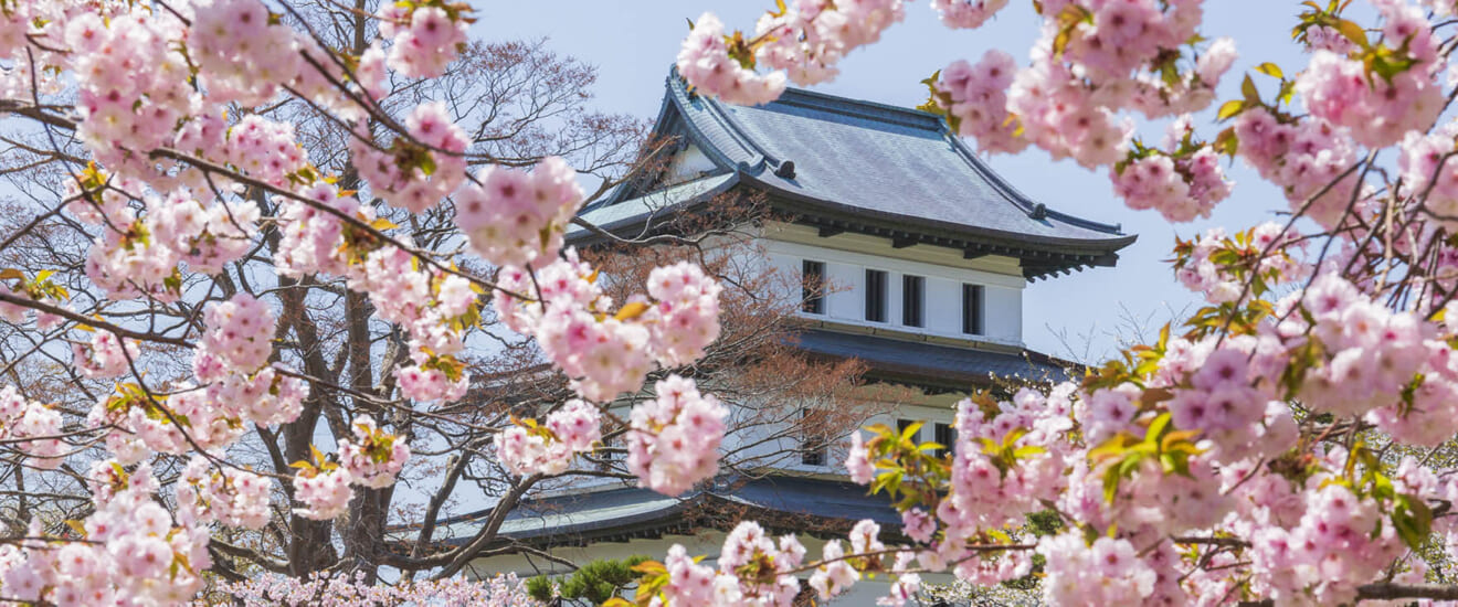桜咲く春の松前の旅【3日間】