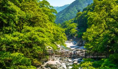 四国まんなか千年ものがたり 大歩危(おおぼけ)と日本三大秘境・祖谷(いや)渓谷の旅【3日間】
