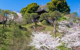 東京 椿山荘 明治の元勲が寄せた故郷への想い
