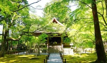 皐月五月 ちょっと贅沢な京都滞在の旅【5日間】