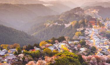 日本の絶景 吉野山の春景色【4日間】