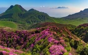 心と身体を癒す「風土自然塾+旅」
