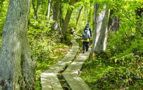 大自然を満喫・歩く旅
