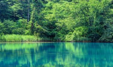 風土自然塾+旅 裏磐梯の湖沼を歩く【4日間】