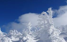 蔵王の樹氷と日本三大御湯・秋保温泉の旅