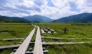 北八ヶ岳・尾瀬ヶ原 人気の「大自然を歩く旅」2コース