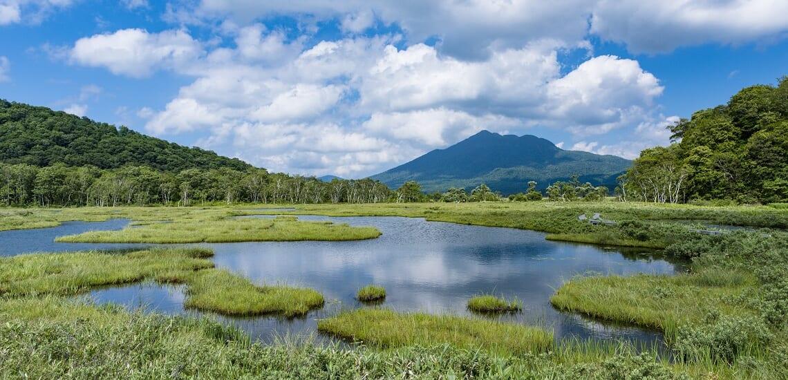 尾瀬を歩く 尾瀬ヶ原ハイキングと谷川岳・天神平の旅【4日間】