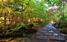 高級感漂う阿蘇の秘湯・黒川温泉と嬉野の名旅館を訪ねて