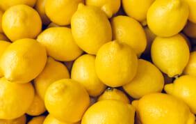 レモンの島の名産品・瀬戸田レモン