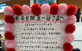 羽田発 日本のゴーギャン田中一村の世界と奄美大島の旅