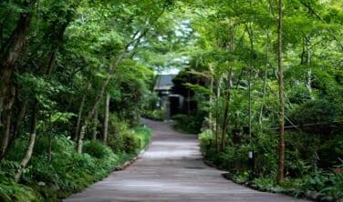 涼やかな阿蘇の秘湯と嬉野の名旅館 【5日間】