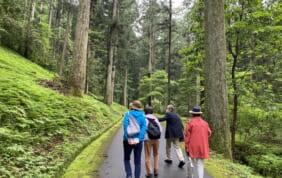 風土自然塾+旅 奥美濃の巨木の森を歩く