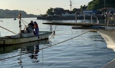 漁港を食す 豊後 旬の味覚と国宝臼杵石仏群の旅【4日間】