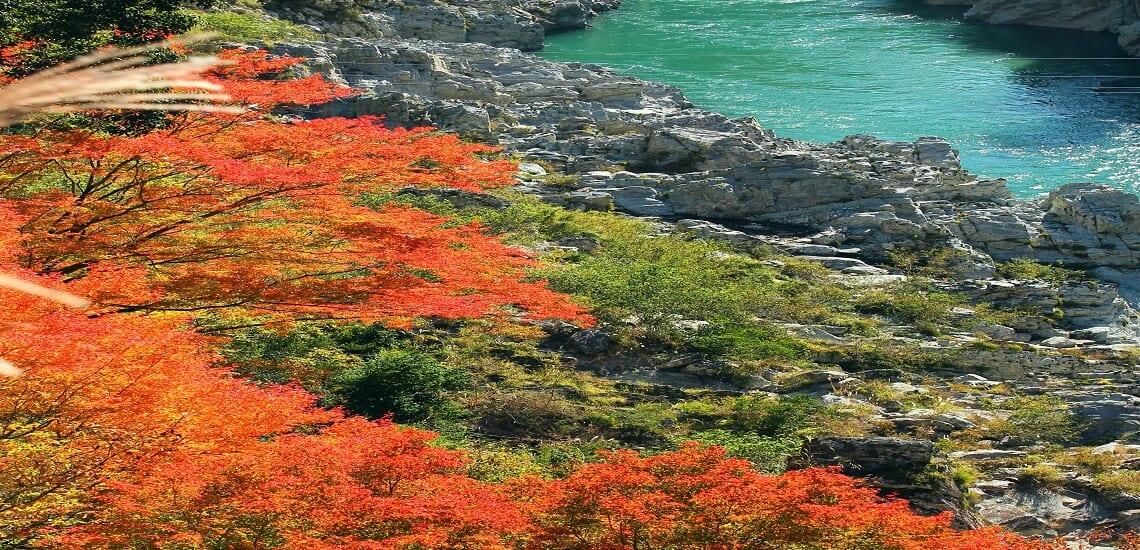 秋景色の祖谷(いや)渓谷と石鎚国定公園の旅【3日間】