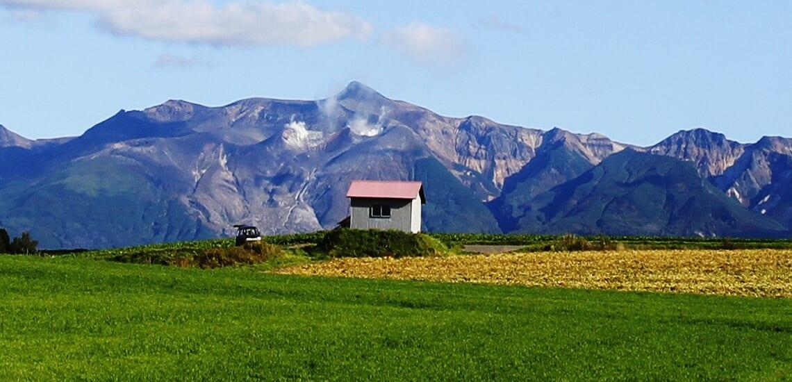 美瑛の丘巡りと夏の富良野滞在の旅【5日間】