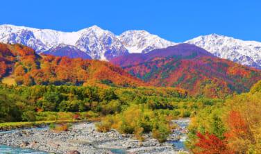 松茸山荘と白馬 北アルプスの秋風景 【4日間】
