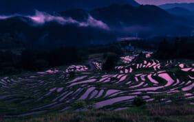 日本の棚田