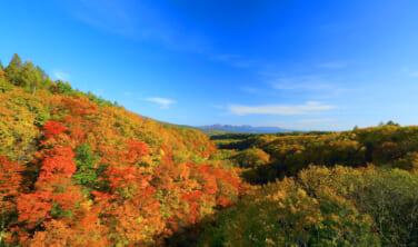 ハイグレード車両「和(なごみ)」特別運行でゆく 秋の北東北周遊の旅【5日間】Aコース