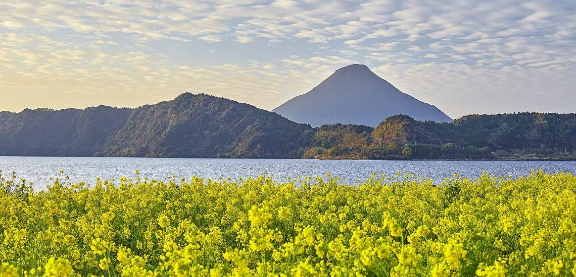 屋久島・種子島と菜の花の指宿【5日間】