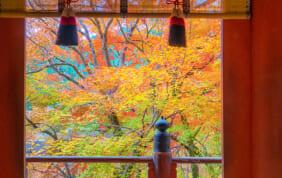 談山神社の紅葉(奈良の紅葉)