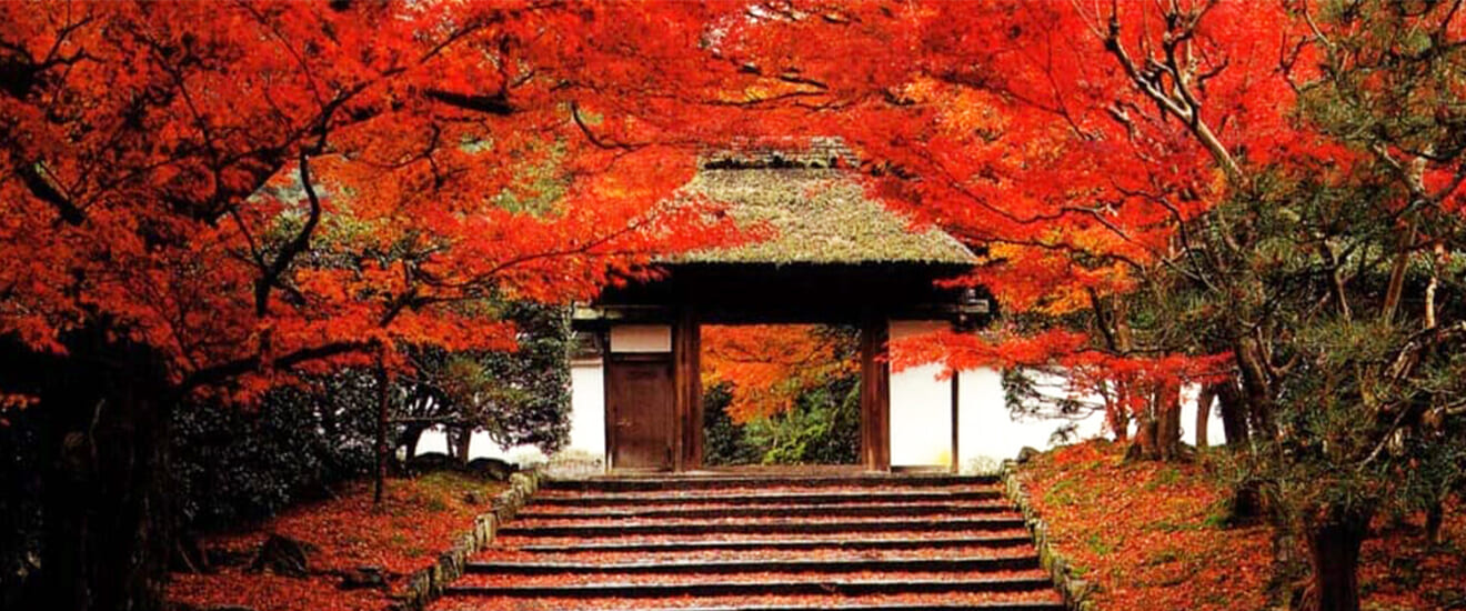 有形文化財 長楽館と紅葉の京都特別拝観の旅 【4日間】