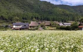 山の京都 美山の町並み