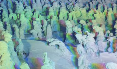 名古屋発着 海と山の冬景色 松島と蔵王樹氷ライトアップ【4日間】