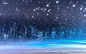 冬だからこその北海道
