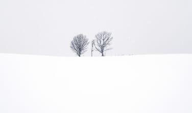 北の国は冬がいちばん美しい